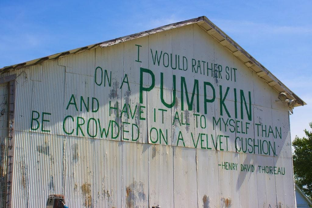 The Great Pumpkin Patch Arthur Illinois
