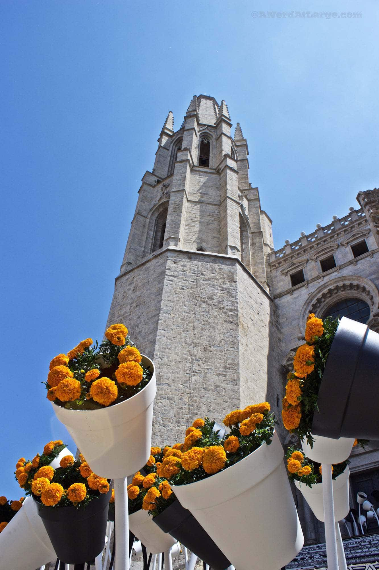 Temps de Flors Girona Spain